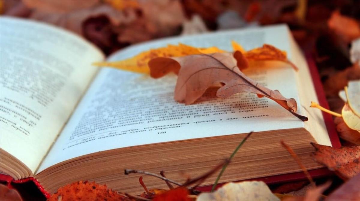 Lecturas de madrid recomendadas para este otoño